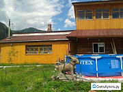 Дом 80 м² на участке 13 сот. Горно-Алтайск