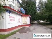 Торговое помещение, 250 кв.м., магазин визит Нижневартовск