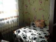 2-комнатная квартира, 41 м², 2/4 эт. Рузаевка