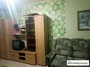 1-комнатная квартира, 45 м², 1/10 эт. Железногорск