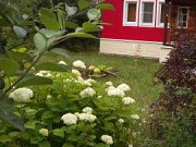 Дом 80 м² на участке 10 сот. Красногорск