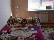 Дом 105 м² на участке 12 сот. Азов