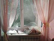 1-комнатная квартира, 29 м², 2/5 эт. Петра Дубрава