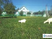 Дом 70 м² на участке 8 сот. Костерево
