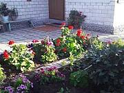 Дом 69 м² на участке 6 сот. Славгород