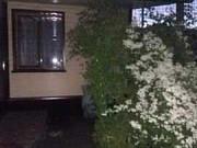 Дом 60 м² на участке 17 сот. Михайловка